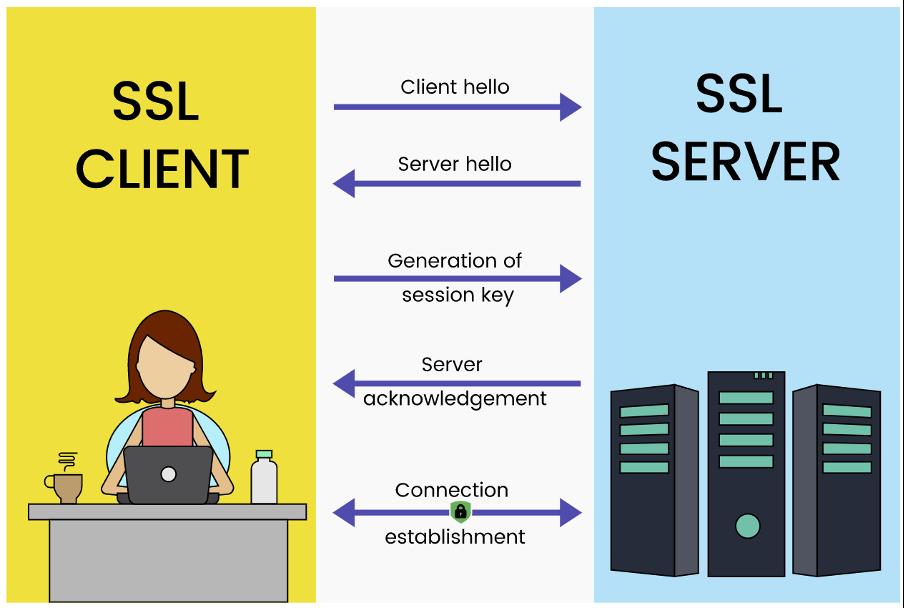 Så fungerar SSL-certifikatens kommunikation mellan klient och server.
